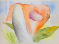"""""""#4"""", serie """"Sensualidades"""", lápiz de color sobre papel, 24 x 34 cm, 2011"""