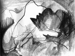 """#11"", serie ""Esencia de grises"", grafito sobre papel, 17 x 21,5 cm, 2008"