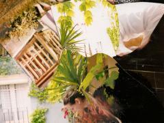 """""""Sobre el paisaje #30"""", tinta negra sobre collage fotográfico, 11,5 x 18,5 cm, 2010"""