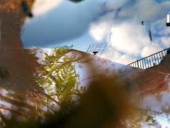 """""""Sobre el paisaje #99"""", acrílico y ceras sobre collage fotográfico, 17,5 x 13,5 cm, 2010"""