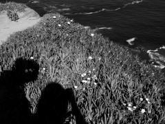"""#61"", Cabo da Roca, Portugal, impresión digital, 33,3 x 50 cm, 2017"