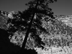 """""""AZ #4"""", El Gran Cañón, Arizona (USA), impresión digital, 33,3 x 50 cm, 2013"""
