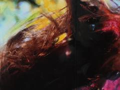 """""""Sobre el paisaje #38"""", ceras sobre fotografía, 15 x 16 cm, 2009"""